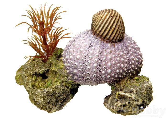 Haustierbedarf Aggressiv Nobby Aqua Ornaments Muschel Mit Pflanzen 7,5x5x5,5cm Fische & Aquarien